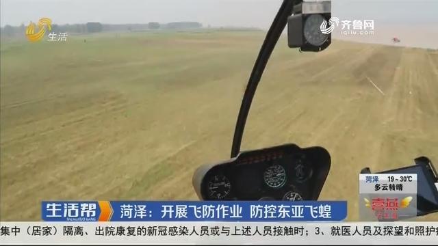 菏泽:开展飞防作业 防控东亚飞蝗