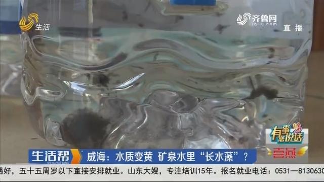 """【有事您说话】威海:水质变黄 矿泉水里""""长水藻""""?"""