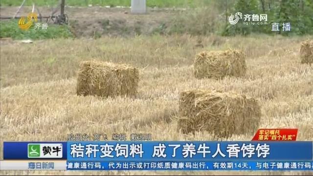 胶州:秸秆变饲料 成了养牛人香饽饽