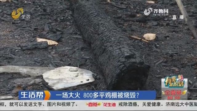 【有事您说话】潍坊:一场大火 800多平鸡棚被烧毁?