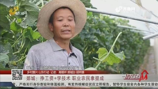 【乡村振兴 山东行动】郯城:挣工资+学技术 职业农民拿提成