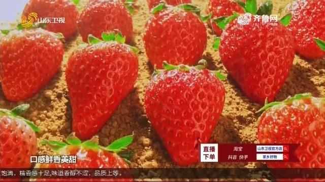 20200627《家乡好物》:济南历城区副区长李金国推介居家休闲小食