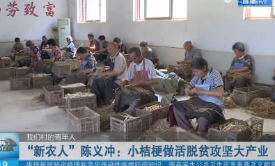 """【我们村的青年人】""""新农人""""陈义冲:小桔梗做活脱贫攻坚大产业"""