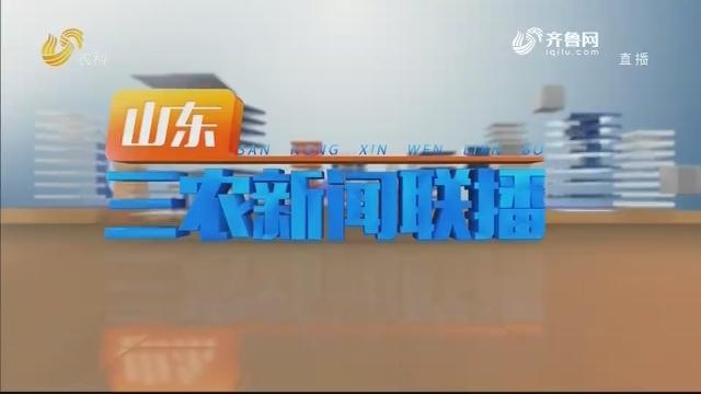 2020年07月01日山东三农新闻联播完整版