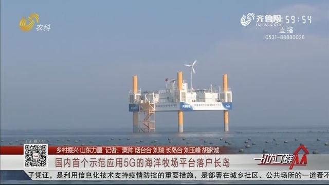 【乡村振兴 山东力量】国内首个示范应用5G的海洋牧场平台落户长岛