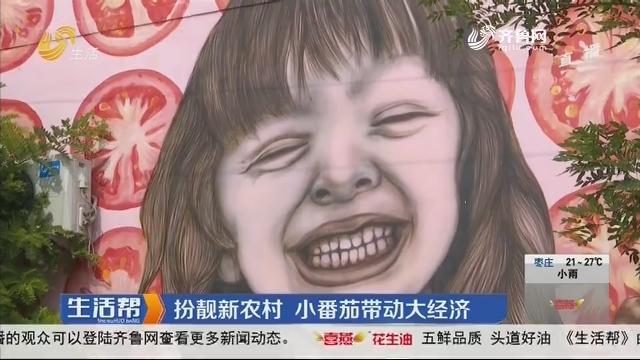潍坊:扮靓新农村 小番茄带动大经济