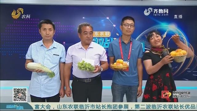 20200705《总站长时间》:中国农业创富大会——临沂组团 第二波优品参展