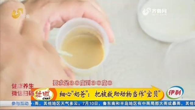 """济南:疫情期间 猛禽救助中心来了不少""""萌禽"""""""