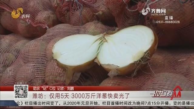 """【助农""""站""""C位】潍坊:仅用5天 3000万斤洋葱快卖光了"""