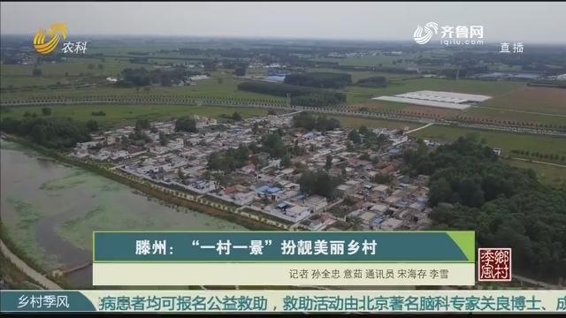 """【村庄复兴 美丽山东】滕州:""""一村一景""""扮靓美丽村庄"""