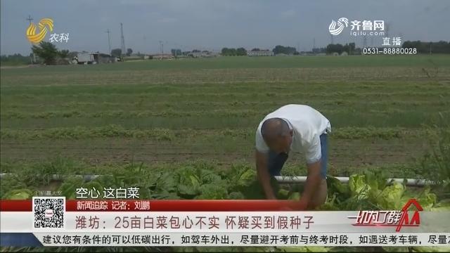 【新闻追踪】潍坊:25亩白菜包心不实 怀疑买到假种子