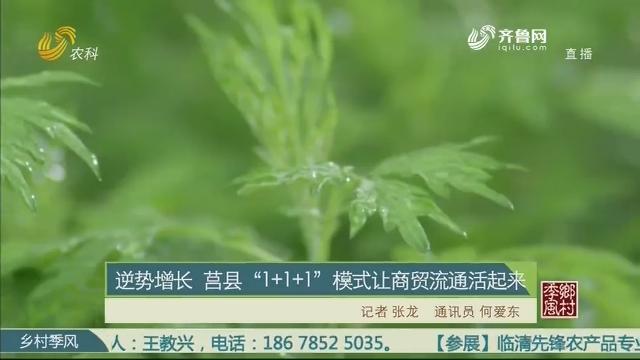 """逆势增长 莒县""""1+1+1""""形式让商贸流畅活起来"""