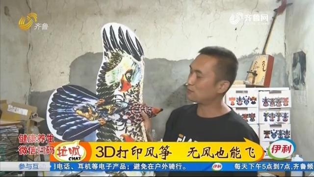 3D打印风筝 无风也能飞