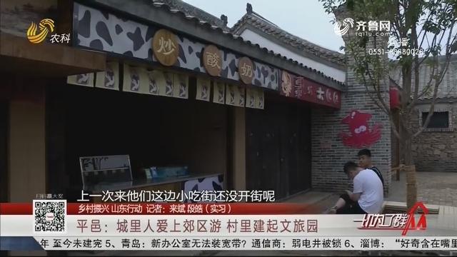 【乡村振兴 山东行动】平邑:城里人爱上郊区游 村里建起文旅园