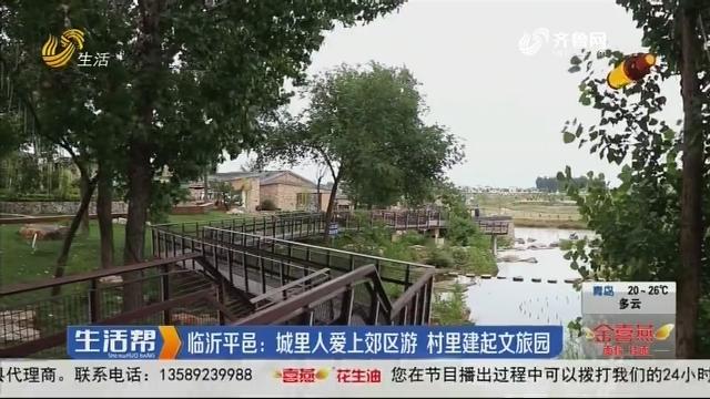 临沂平邑:城里人爱上郊区游 村里建起文旅园