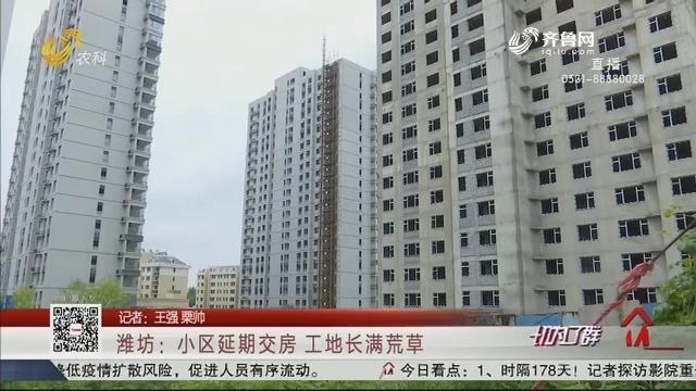 潍坊:小区延期交房 工地长满荒草