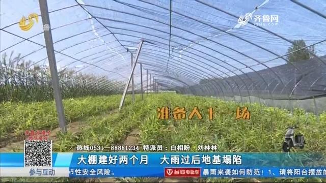 阳谷:大棚建好两个月 大雨过后地基塌陷