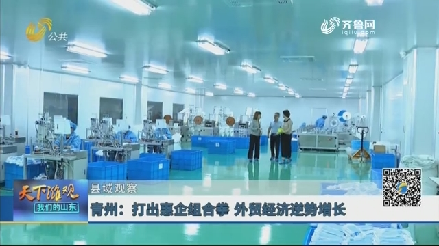 【县域观察】青州:打出惠企组合拳 外贸经济逆势增长
