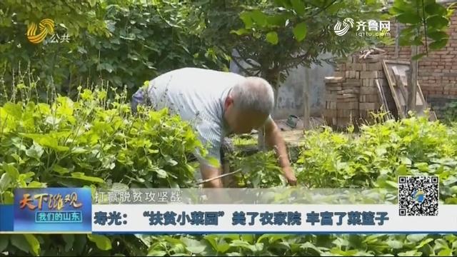 """【打赢脱贫攻坚战】寿光:""""扶贫小菜园""""美了农家院 丰富了菜篮子"""