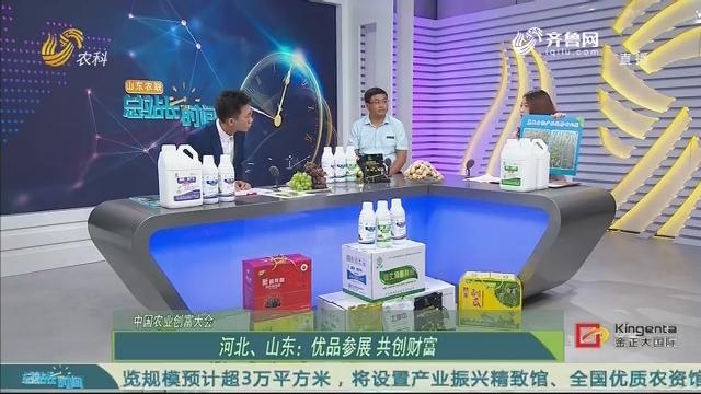 20200726《总站长时间》:中国农业创富大会——河北、山东优品参展 共创财富