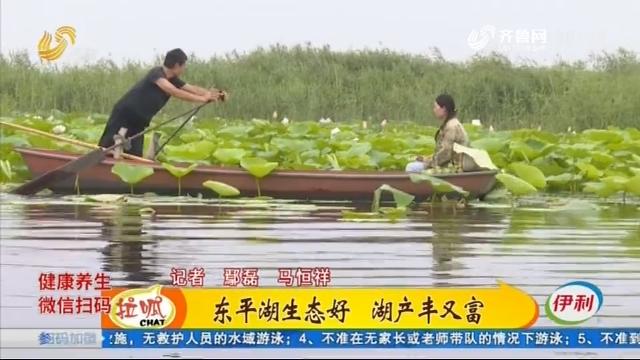 东平:外出打工夫妻 回乡直播卖湖产