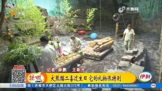 大熊猫二喜过生日 它的礼物很特别