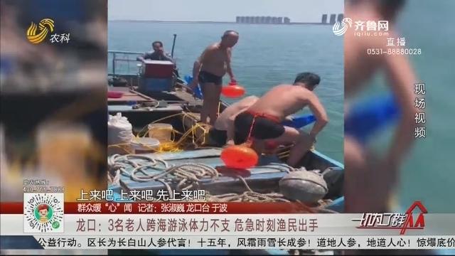 """【群众暖""""心""""闻】龙口:3名老人跨海游泳体力不支 危急时刻渔民出手"""