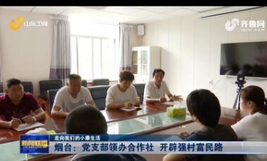 【走向我们的小康生活】烟台:党支部领办合作社 开辟强村富民路