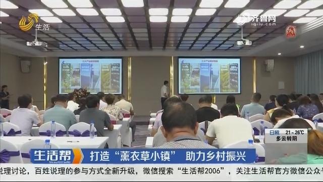"""潍坊:打造""""薰衣草小镇"""" 助力乡村振兴"""