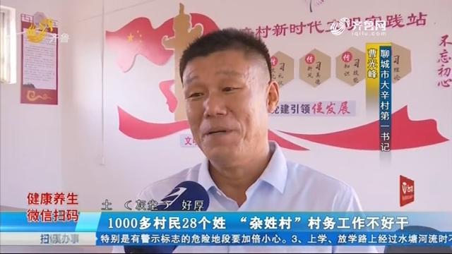 """1000多村民28个姓 """"杂姓村""""村务工作不好干"""