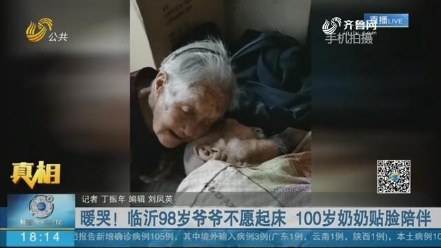 暖哭!临沂98岁爷爷不愿起床 100岁奶奶贴脸陪伴