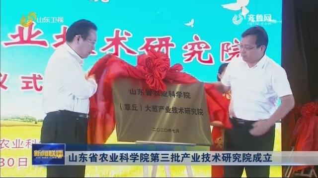 山东省农业科学院第三批产业技术研究院成立