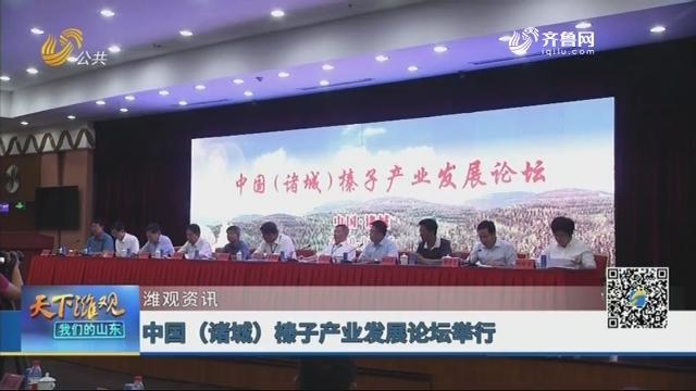 【潍观资讯】中国(诸城)榛子产业发展论坛举行