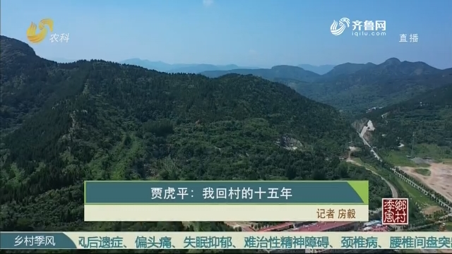 贾虎平:我回村的十五年
