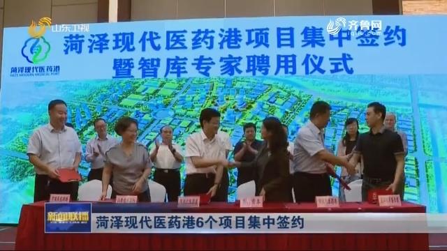 菏泽现代医药港6个项目集中签约
