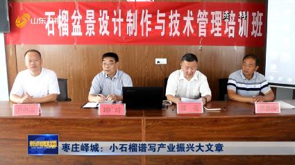 枣庄峄城:小石榴谱写产业振兴大文章