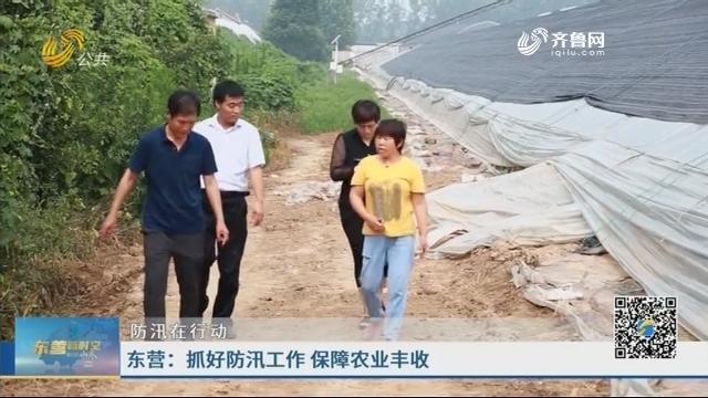东营:抓好防汛工作 保障农业丰收