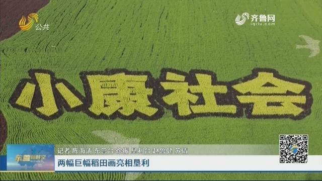 两幅巨幅稻田画亮相垦利