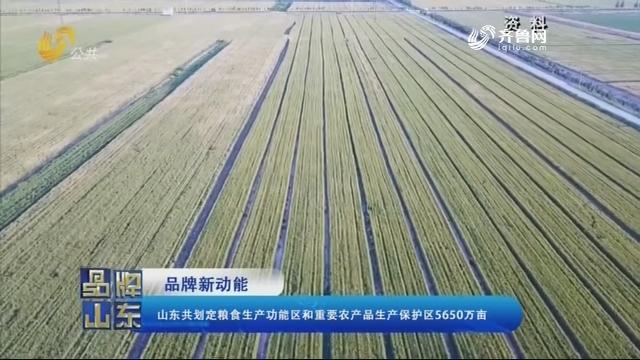 【品牌新动能】山东共划定粮食生产功能区和重要农产品生产保护区5650万亩