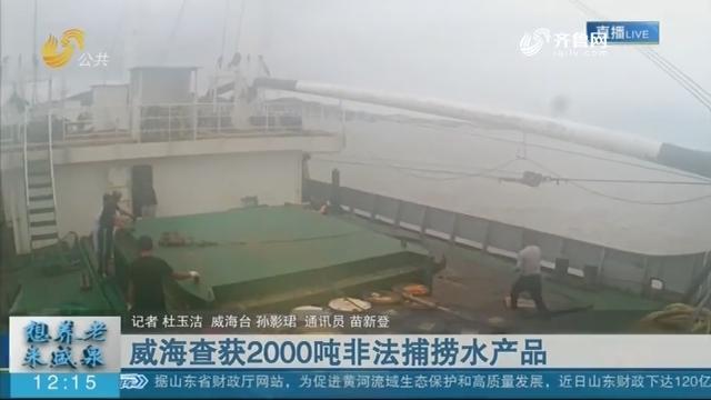 威海查获2000吨非法捕捞水产品