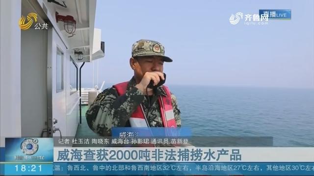 威海查獲2000噸非法捕撈水產品