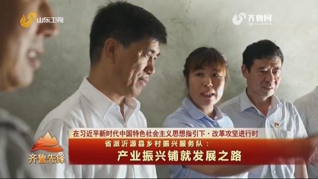 20200804《齐鲁先锋》:省派沂源县乡村振兴服务队——产业振兴铺就发展之路