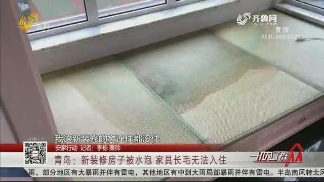 【安家行动】青岛:新装修房子被水泡 家具长毛无法入住