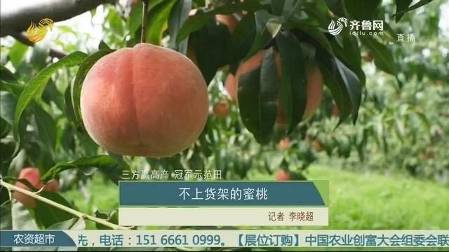 【三方赢高产 冠军示范田】不上货架的蜜桃