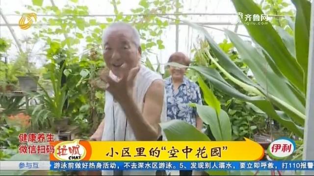 """济南:小区里的""""空中花园"""""""