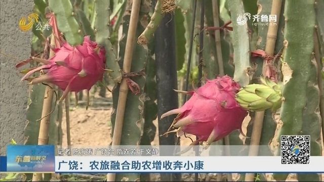 广饶:农旅融合助农增收奔小康