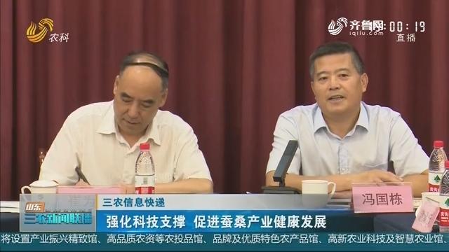 【三农信息快递】强化科技支撑 促进蚕桑产业健康发展