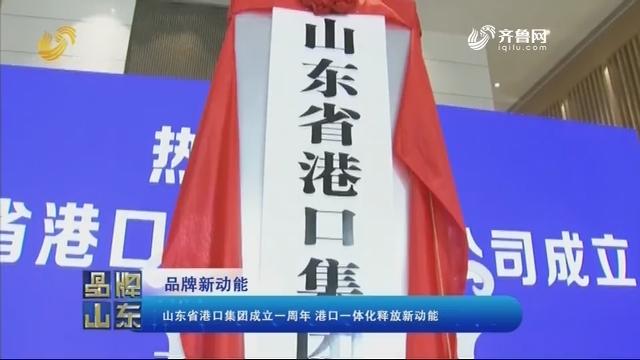 【品牌新动能】山东省港口集团成立一周年 港口一体化释放新动能