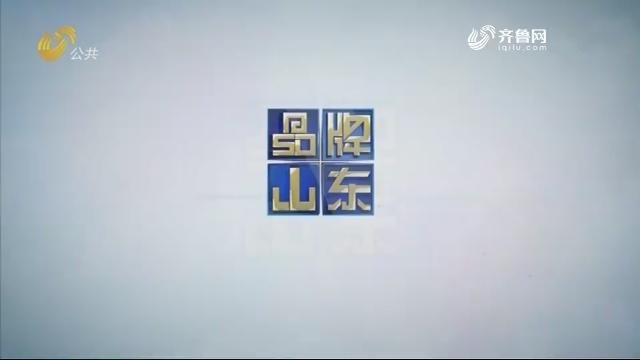 2020年08月09日《品牌山东》完整版