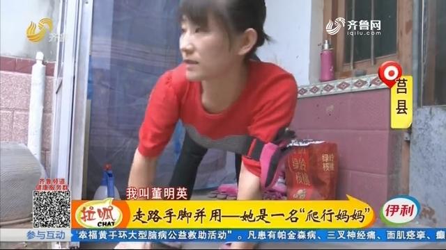 """莒县:走路手脚并用——她是一名""""爬行妈妈"""""""